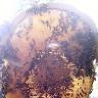 sunhivebee