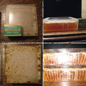 Jimmy's Comb Honey