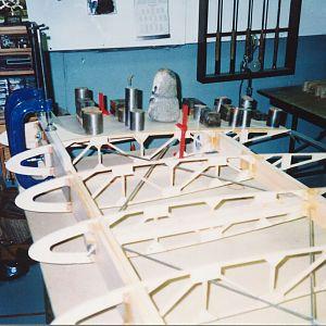 Plywood_wing_walk_glued_on.jpg