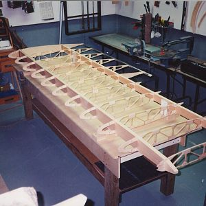 Lower_wing_ribs_glued_in_place.jpg