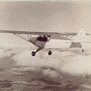 Piper Classic 8