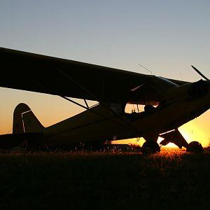cub sunset