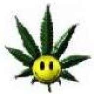 Dr.GreenThumb