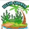 islandgrow
