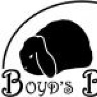 BoydsBunnies