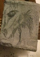 Stone Soap Horse 2 starting with one eye.jpg