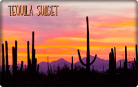 tequila sunset.png