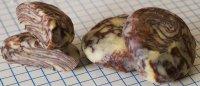 chocolate_marble_dough.jpg